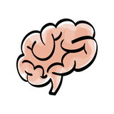Human brain scribble Stock Image