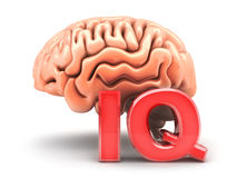Human brain and sign IQ Royalty Free Stock Images