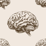 Human brain sketch style seamless pattern vector Stock Images