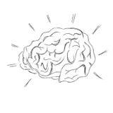 Human, brain, sketch, vector Stock Photography