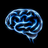 Human brain. Stock illustration. Abstract image of a human brain. The blue glow on black background. Stock  image Royalty Free Stock Photo