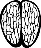 human brain top vector illustration Royalty Free Stock Photography