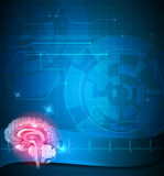 Human brain treatment background. Human brain and cardiogram beautiful design. Abstract blue technology background Royalty Free Stock Photos