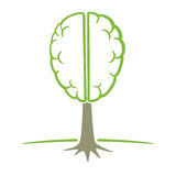 Human brain tree symbol Stock Photos