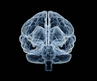 Human brain under x-ray Stock Photo