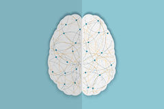 Human brain vec Royalty Free Stock Photo