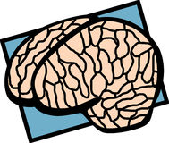 Human brain vector illustration Royalty Free Stock Photos