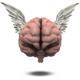 Human Brain with Wings Stock Photo