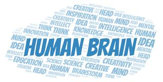 Human Brain word cloud. Wordcloud made with text only stock illustration