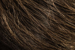 Human brown hair backgrounds Stock Photos