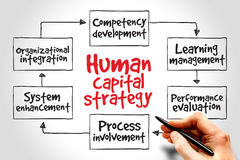 Human capital strategy. Mind map, business concept Royalty Free Stock Photo