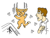 Human and cat. Cat brought chaos. Naughty pet and surprised by the owner. Vector illustration Stock Image