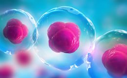 Human cells under a microscope. Research of stem cells. Cellular Therapy. 3d illustration on a light background stock illustration