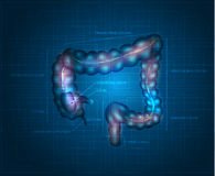 Human colon abstract blue background Stock Photo