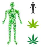 Human Collage of Cannabis. Human composition of weed leaves in variable sizes and green variations. Vector flat ganja icons are united into human composition Royalty Free Stock Photos