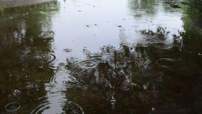 Human cross soak water stock footage