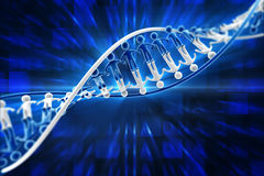 Human DNA Stock Photo
