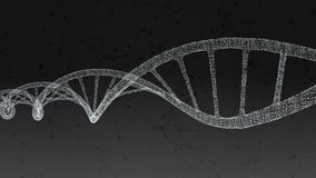 Human DNA. Abstract black background with plexus. Loop animation