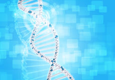 Human DNA. Background of white ring with hexagon Stock Photos