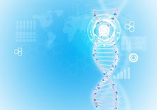 Human DNA. Background of white ring with hexagon Stock Image