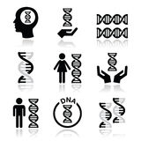 Human DNA, genetics  icons set Stock Photo