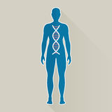 Human DNA Royalty Free Stock Image