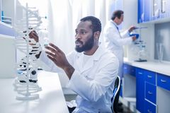 Serious intelligent geneticist looking at the gene model. Human DNA. Serious nice intelligent geneticist sitting at the table looking at the gene model while stock image
