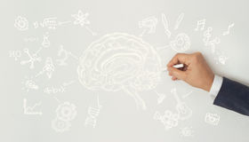 Human drawing, creative brain idea concept, sciences and arts. On white wall background Stock Photography