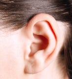 Human ear. Closeup of a human ear stock image