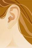 The human ear. Vector illustration Royalty Free Stock Photo