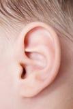 Human ear. Close up of human ear royalty free stock photos