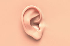 Human ear close up. Without any hair surrounding Royalty Free Stock Image