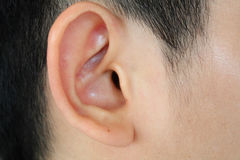 Human ear closeup. Human ear anatomy close up stock photo