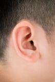Human ear closeup Stock Images