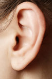 Human ear closeup. Close up image of a woman's ear royalty free stock photos