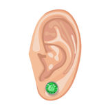 Human ear & earring. Human ear with framed earring front view, vector illustration isolated on white background Stock Photos