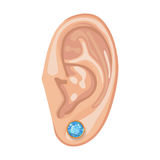 Human ear & earring. Human ear with framed earring front view, vector illustration isolated on white background Royalty Free Stock Image