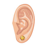 Human ear & earring. Human ear with framed earring front view, vector illustration isolated on white background Stock Photo