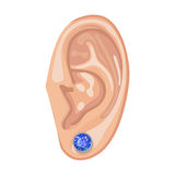 Human ear & earring. Human ear with framed earring front view, vector illustration isolated on white background Royalty Free Stock Images