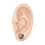 Human ear & earring. Human ear with an hanging earring front view, vector illustration isolated on white background Stock Photography
