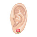 Human ear & earring. Human ear with an hanging earring front view, vector illustration isolated on white background Stock Photo