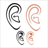 Human ear. Vector illustration : Human ear on a white background Stock Photography