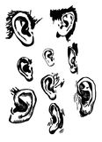 Human ears set. realistic hand drawn vector Stock Photography