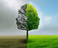 Human emotion mood disorder tree shaped as two human faces Royalty Free Stock Photos