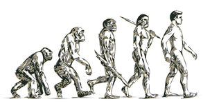 Human evolution. Illustration of theory human evolution Stock Photography