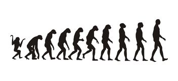 Human evolution stock illustration