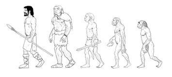 Human evolution illustration. Human evolution digital  illustration, homo erectus, australopithecus, homo habilis, neanderthal, cromagnon Stock Photography