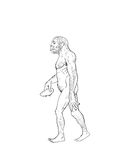 Human evolution illustration Royalty Free Stock Photos