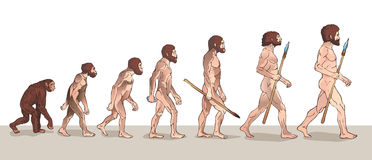 Human Evolution. Man Evolution. Historical Illustrations. Human Evolution Vector Illustration. Royalty Free Stock Photo