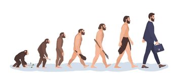 Free Human Evolution Stages. Evolutionary Process And Gradual Development Visualization From Monkey Or Primate To Businessman Stock Image - 116625251